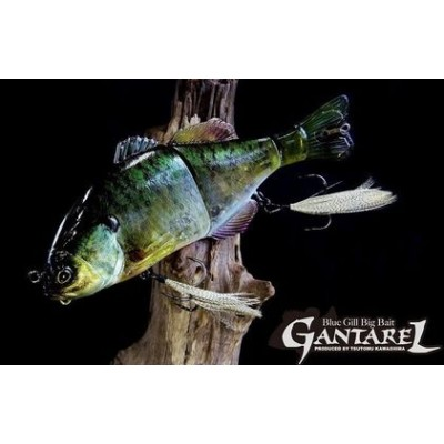 Jackall Gantarel 160mm (Jointed big baits)