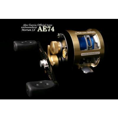 ABU ZPI AE74, 2005
