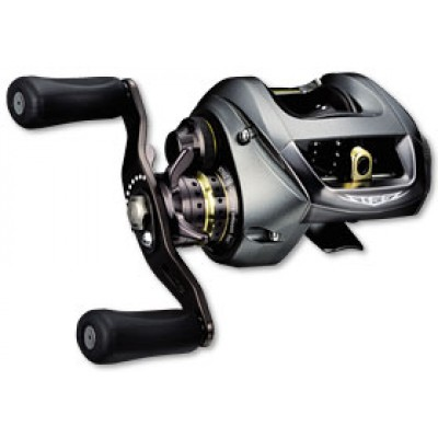 Daiwa 06 Team Daiwa Steez Custom casting 2006-2013